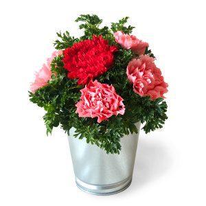 Carnation Bouquet Malaysia - DAINTY CARNATIONS flower bouquetCarnation Bouquet Malaysia – DAINTY CARNATIONS flower bouquet