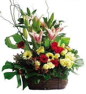 Flower Shop Kuala Lumpur | Mixed Flower-Baskets-4WB30 Mushy