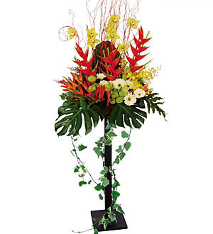 Gift For Shop Opening Ceremony Flower Arrangement