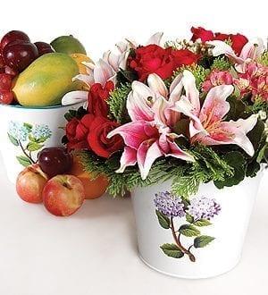 Gourmet fruit baskets Malaysia | Fruit basket 6FR4-AB_Duet Aplenty