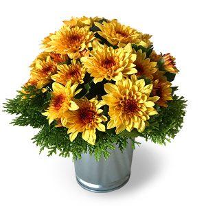 flower arrangements kuala lumpur malaysia - Daisy Affair daisy flower bouquet