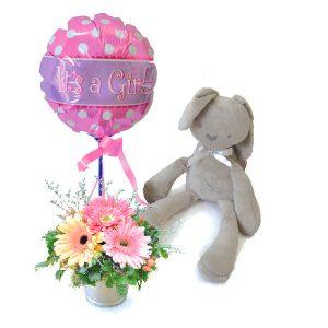 Baby Shower Gifts Malaysia - Baby Cinnamon BunnyBaby Shower Gifts Malaysia - Baby Cinnamon Bunny