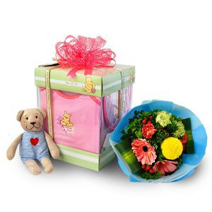 Newborn gifts Malaysia - Newborn Wear - Classic PoohNewborn gifts Malaysia - Newborn Wear - Classic Pooh