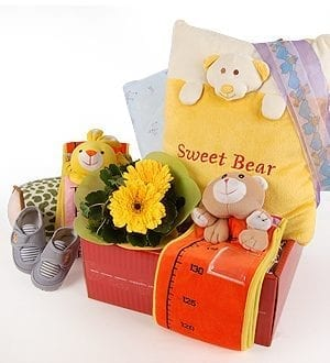 Baby gifts malaysia warmest welcome gifts for newborn florygift baby shower gift malaysia baby gifts comfy cozy lad negle Gallery