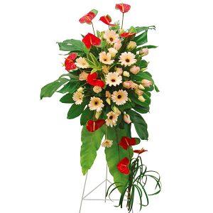 Opening Ceremony Flower Malaysia - PRETTY VICTOROpening Ceremony Flower Malaysia - PRETTY VICTOR
