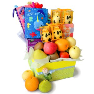 Baby Gifts for Twins Newborn Malaysia - Twins Babies Playbooks Hamper for twins