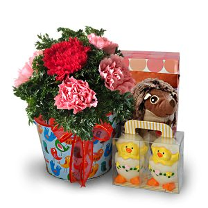 baby gift delivery malaysia - Baby Rattatoulibaby gift delivery malaysia - Baby Rattatouli