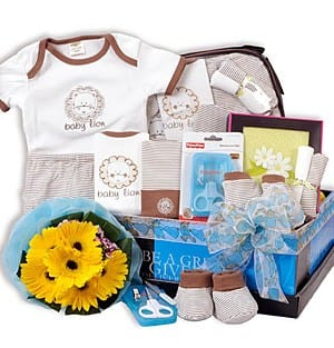 Personalized baby shower gifts malaysia impressive gifts wonder lion rm35200 add to cart newborn baby gifts malaysia negle Gallery