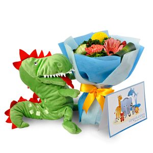 gifts for newborn boy malaysia - My First Dragon