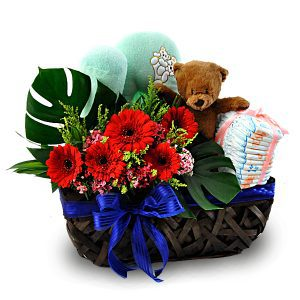 Baby Gift Set Malaysia - New Baby ArrivalBaby Gift Set Malaysia - New Baby Arrival