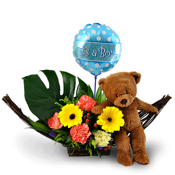 2f3014dc8d91 Baby gift ideas Malaysia - Baby Bruno