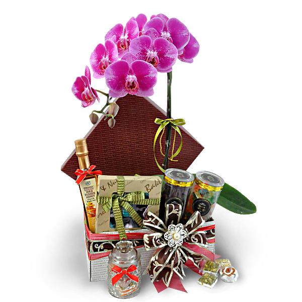 Hari Raya flowers gift MAGNOLIA ORCHID